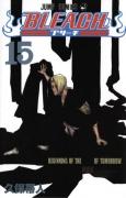 Bleach TPB Vol. 15